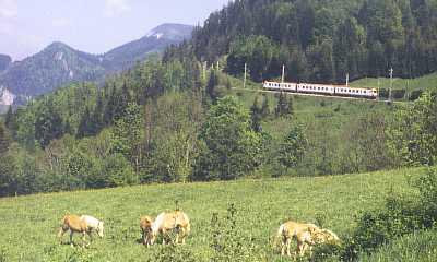 4090 bei Annaberg - Reith